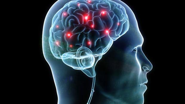 synapser i hjarnan
